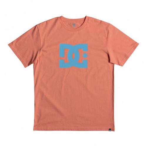 STAR SS T恤